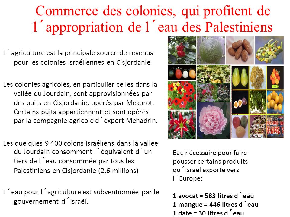 Commerce des colonies, qui profitent de l´appropriation de l´eau des Palestiniens