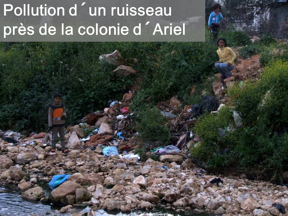 Pollution d´un ruisseau près de la colonie d´Ariel