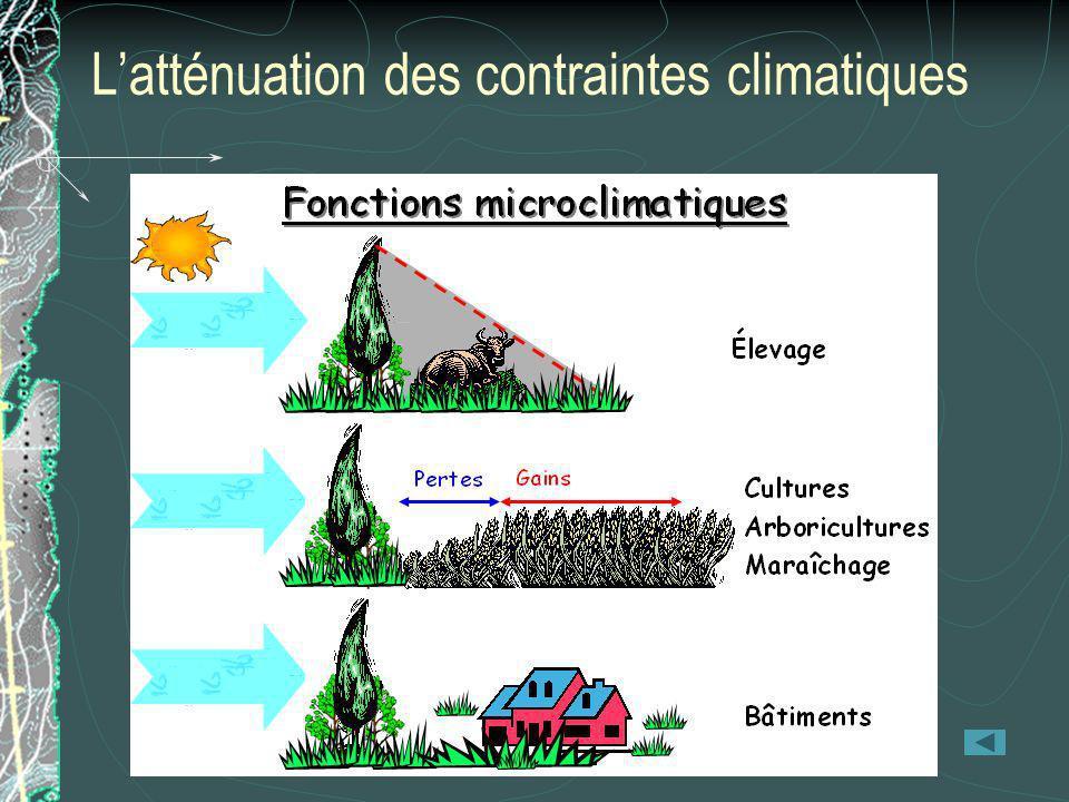 L'atténuation des contraintes climatiques