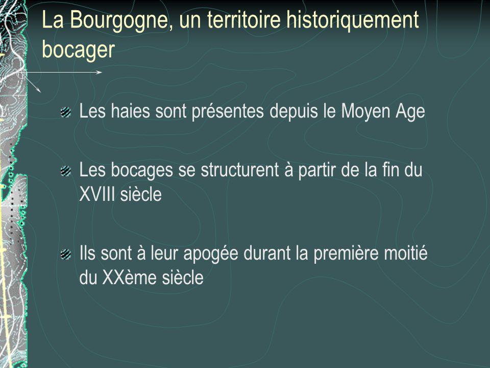 La Bourgogne, un territoire historiquement bocager