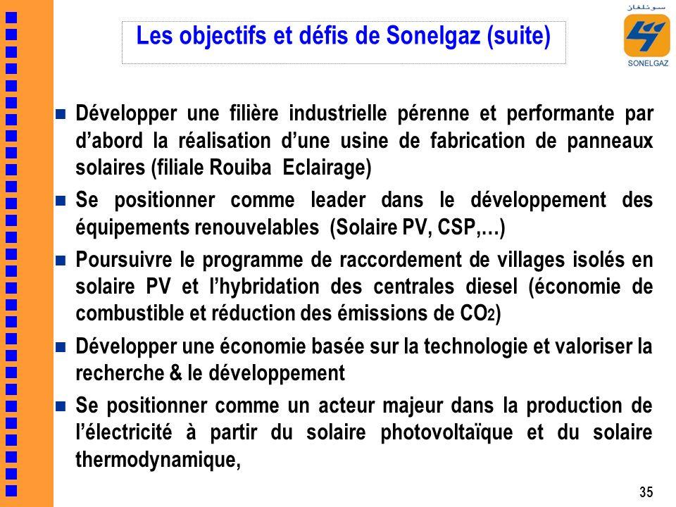 Les objectifs et défis de Sonelgaz (suite)