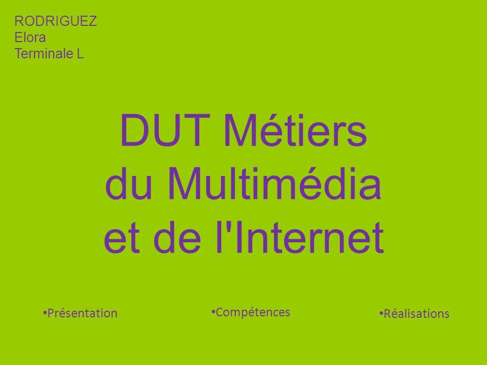 DUT Métiers du Multimédia et de l Internet