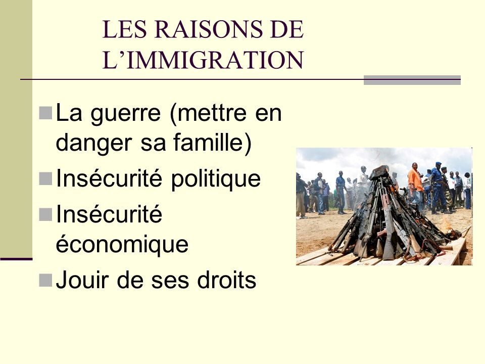 LES RAISONS DE L'IMMIGRATION