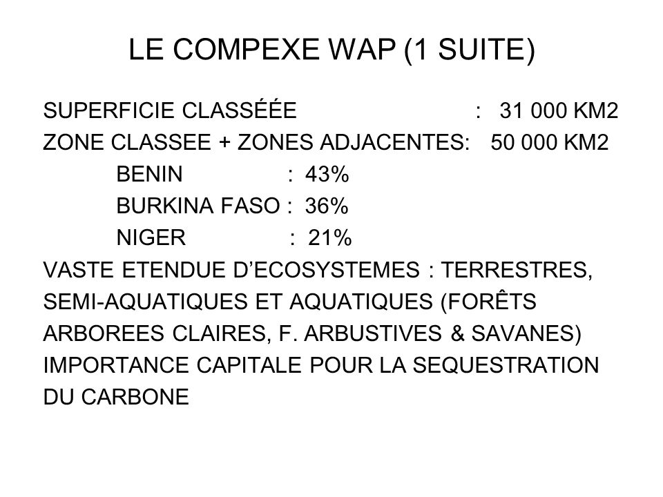 LE COMPEXE WAP (1 SUITE)