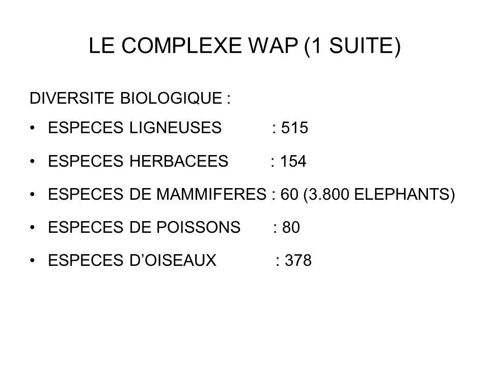 LE COMPLEXE WAP (1 SUITE)