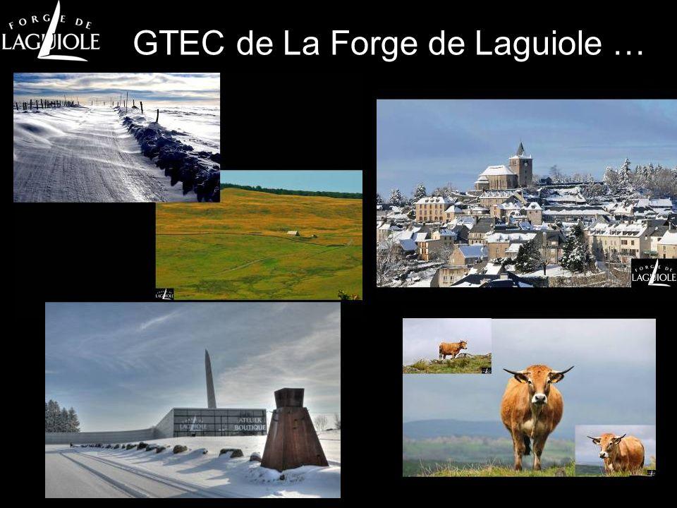 GTEC de La Forge de Laguiole …