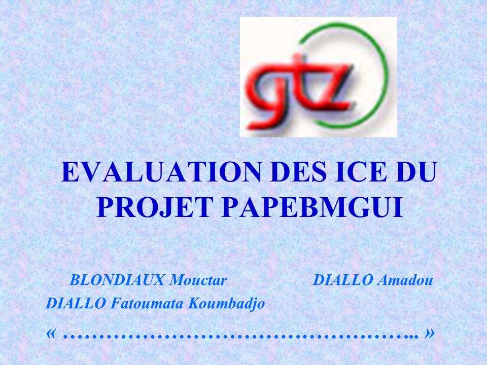 EVALUATION DES ICE DU PROJET PAPEBMGUI