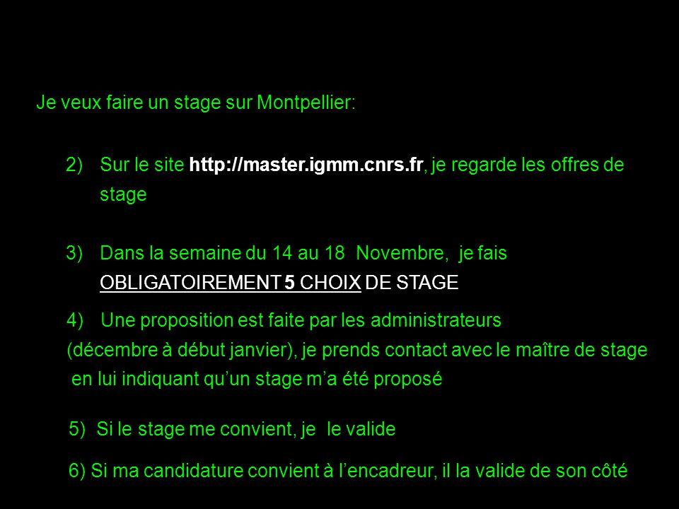 Je veux faire un stage sur Montpellier: