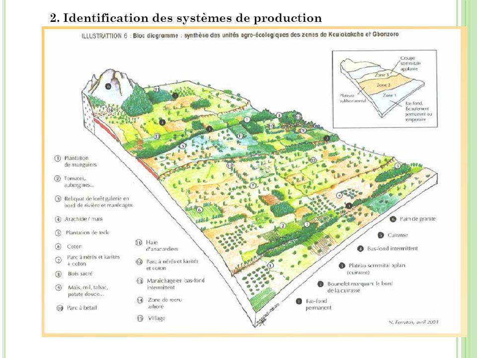 2. Identification des systèmes de production