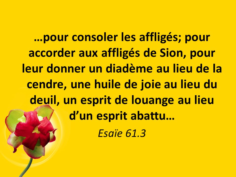 …pour consoler les affligés; pour accorder aux affligés de Sion, pour leur donner un diadème au lieu de la cendre, une huile de joie au lieu du deuil, un esprit de louange au lieu d'un esprit abattu…