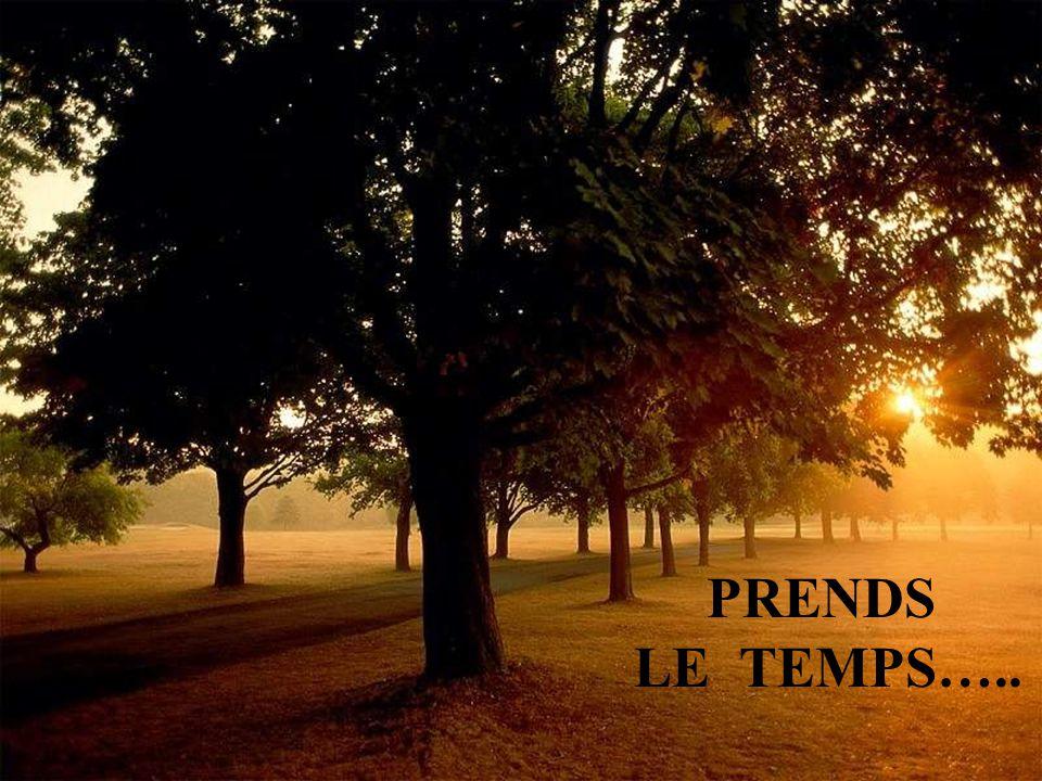 PRENDS LE TEMPS…..