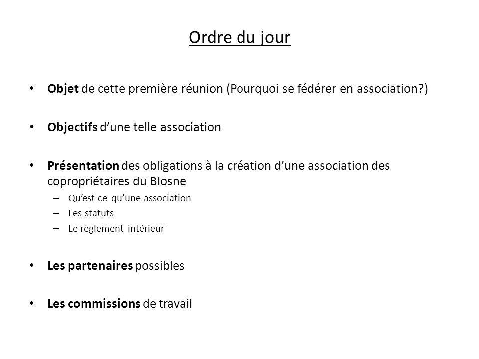 Ordre du jour Objet de cette première réunion (Pourquoi se fédérer en association ) Objectifs d'une telle association.