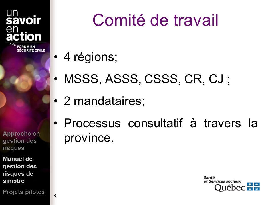 Comité de travail 4 régions; MSSS, ASSS, CSSS, CR, CJ ; 2 mandataires;