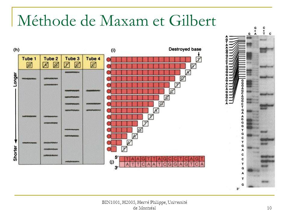 Méthode de Maxam et Gilbert