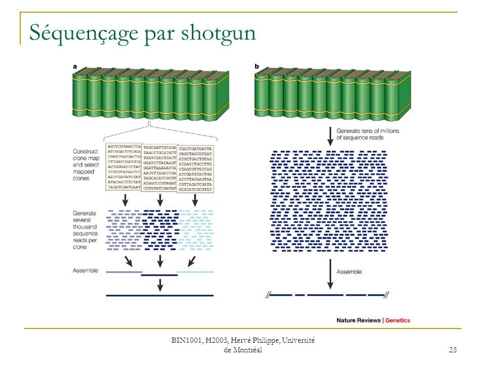 Séquençage par shotgun