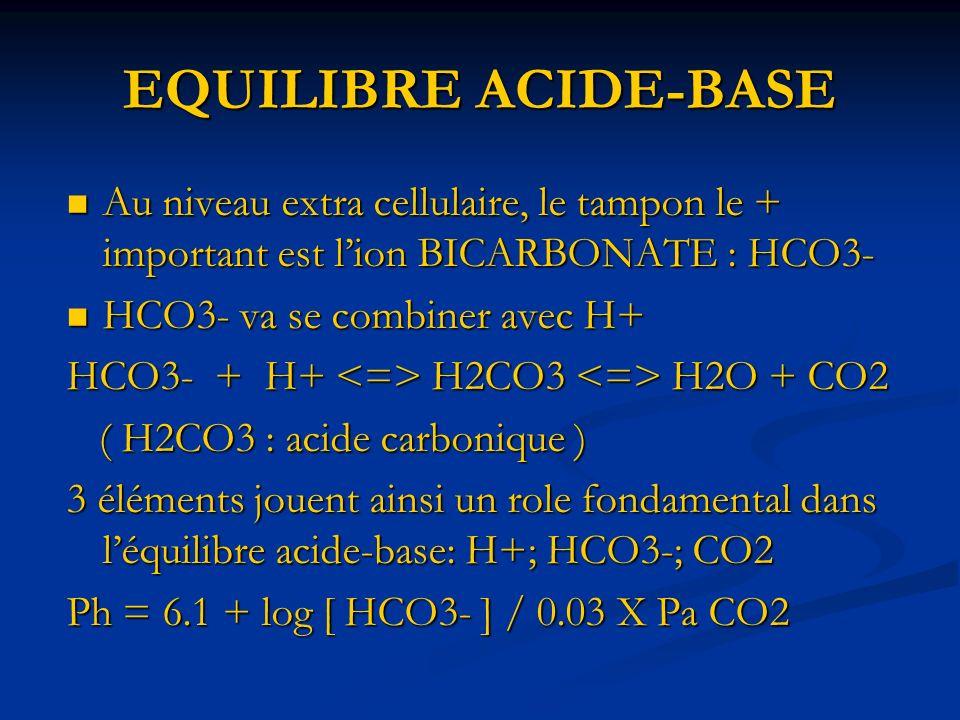 EQUILIBRE ACIDE-BASE Au niveau extra cellulaire, le tampon le + important est l'ion BICARBONATE : HCO3-