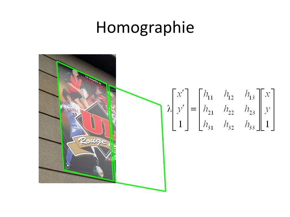 Homographie