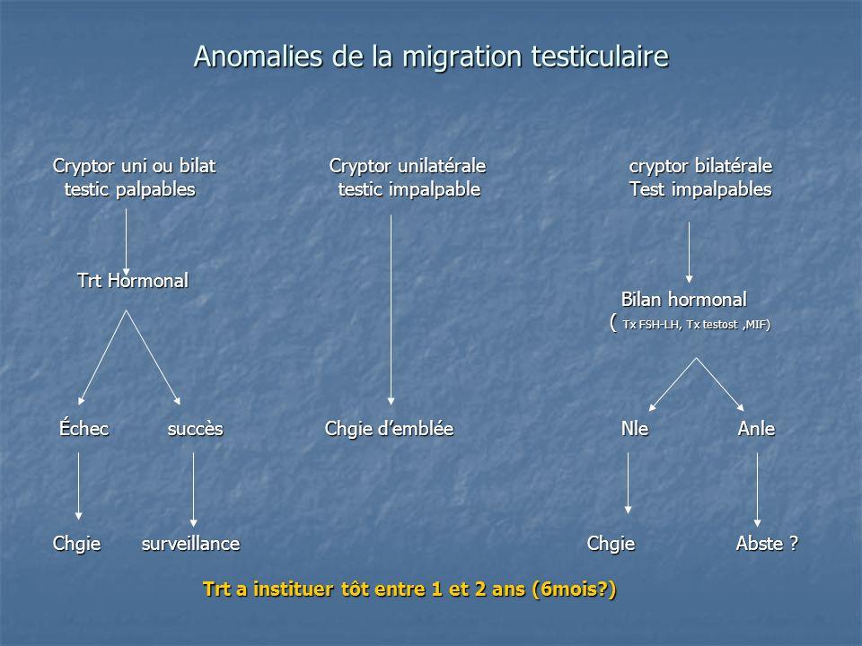 Anomalies de la migration testiculaire