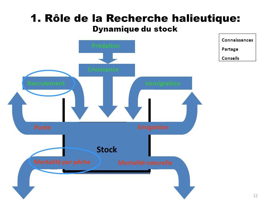 1. Rôle de la Recherche halieutique: Dynamique du stock