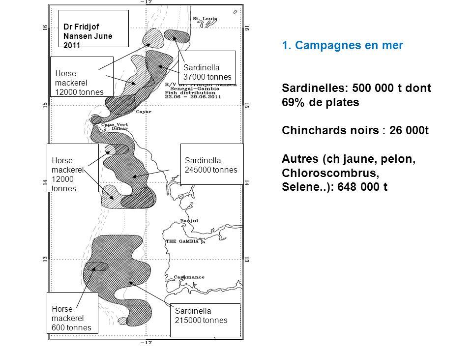 Sardinelles: 500 000 t dont 69% de plates