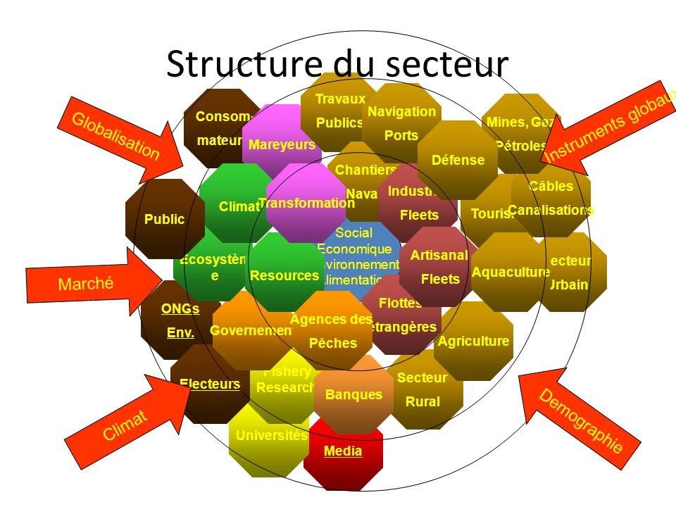 Structure du secteur Instruments globaux Globalisation Marché