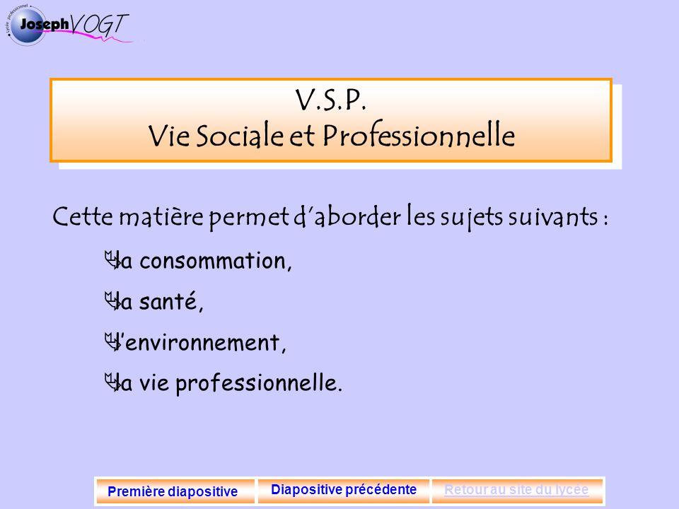 V.S.P. Vie Sociale et Professionnelle Diapositive précédente
