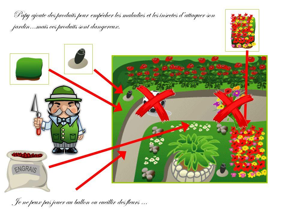Papy ajoute des produits pour empêcher les maladies et les insectes d'attaquer son jardin…mais ces produits sont dangereux.