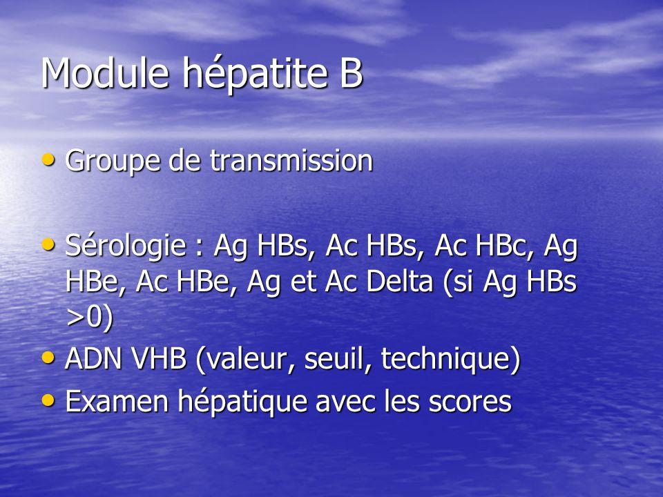 Module hépatite B Groupe de transmission