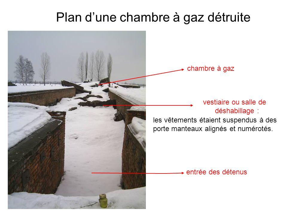 Plan d'une chambre à gaz détruite
