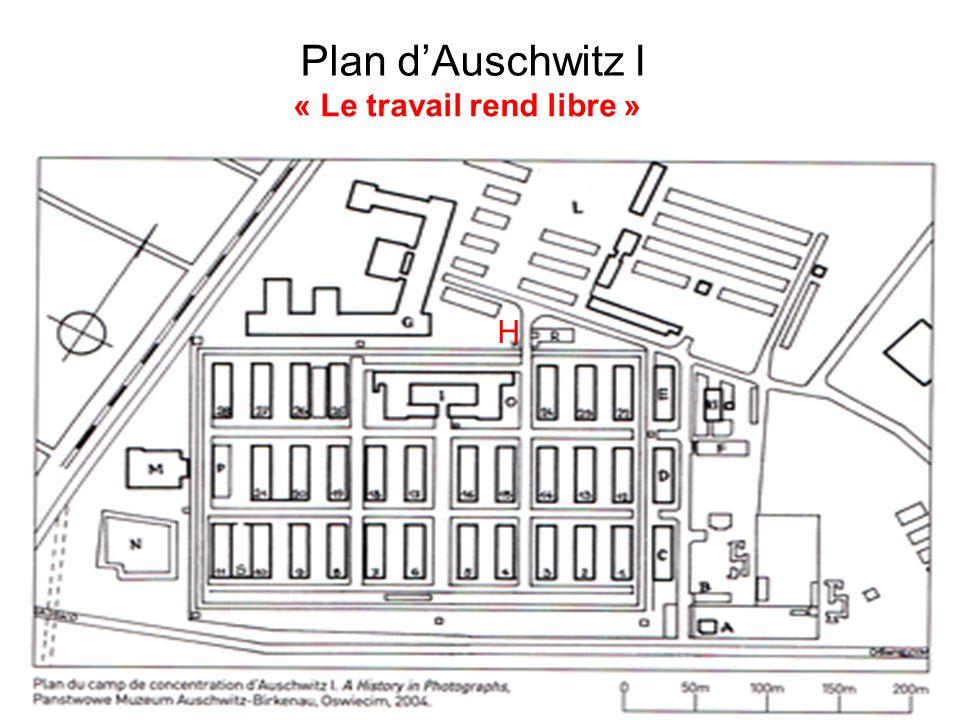 Plan d'Auschwitz I « Le travail rend libre » H