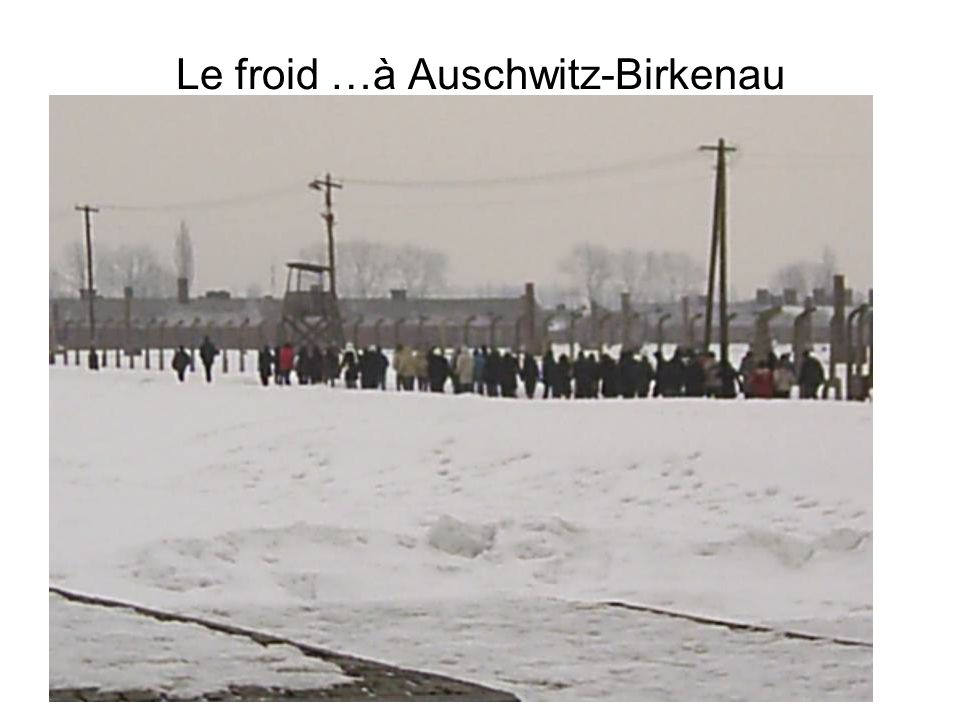 Le froid …à Auschwitz-Birkenau