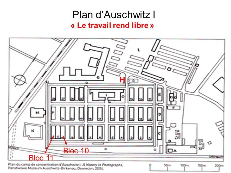 Plan d'Auschwitz I « Le travail rend libre » H Bloc 10 Bloc 11