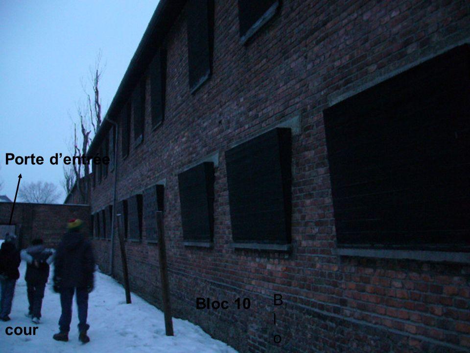 Porte d'entrée Bloc Bloc 10 cour