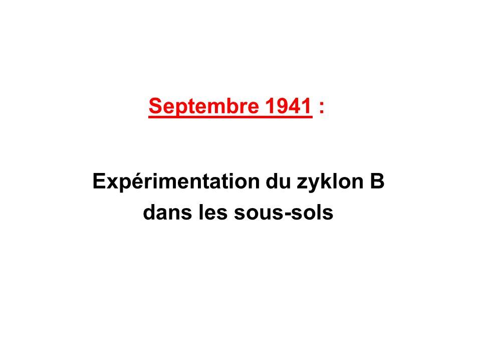 Expérimentation du zyklon B dans les sous-sols