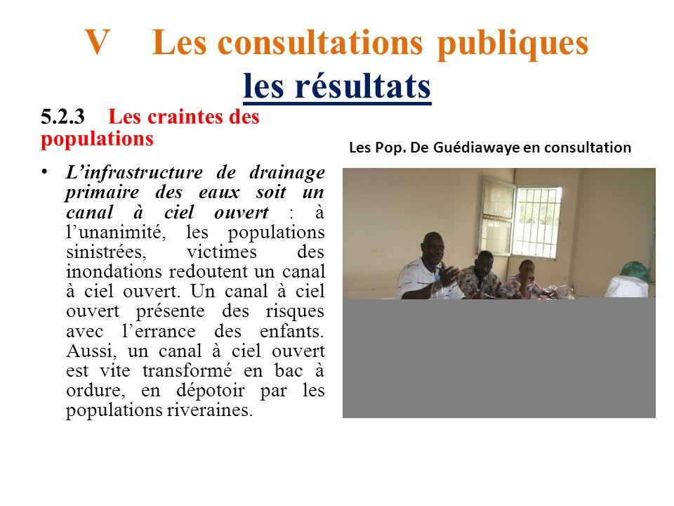 V Les consultations publiques les résultats