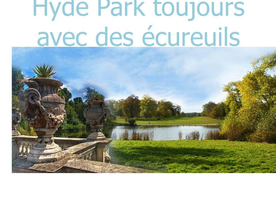 Hyde Park toujours avec des écureuils