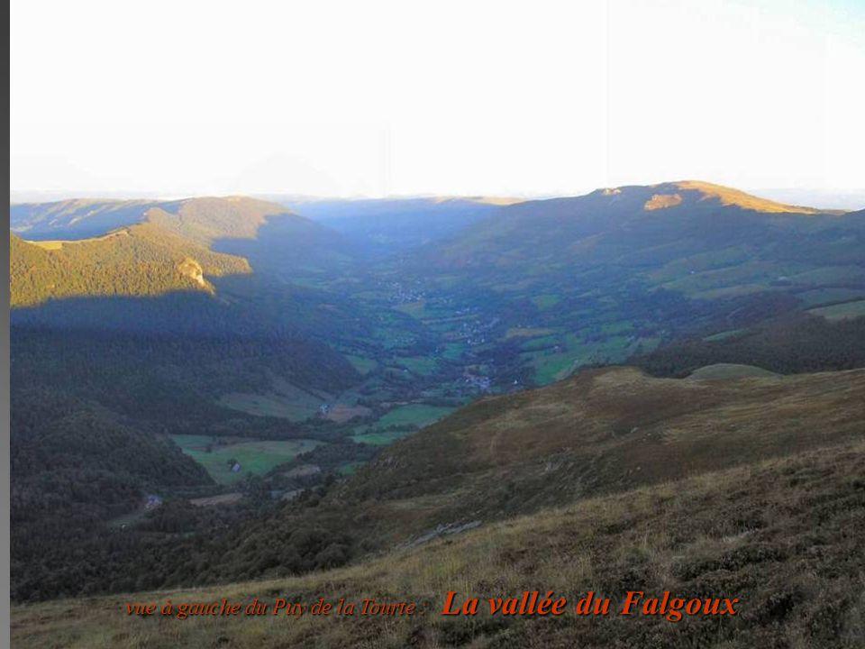 vue à gauche du Puy de la Tourte : La vallée du Falgoux