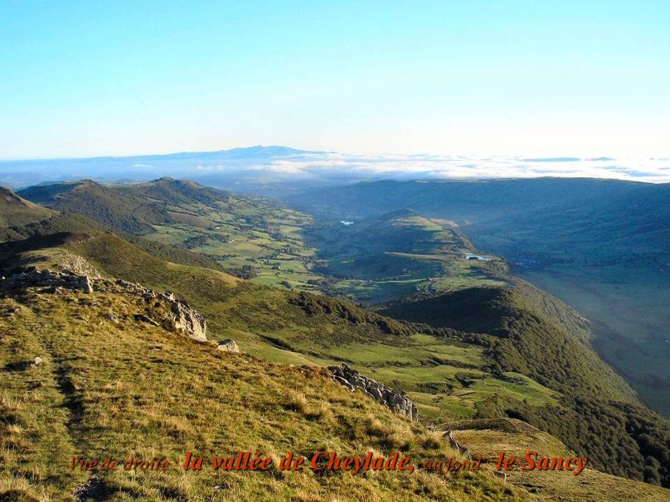 Vue de droite : la vallée de Cheylade, au fond : le Sancy