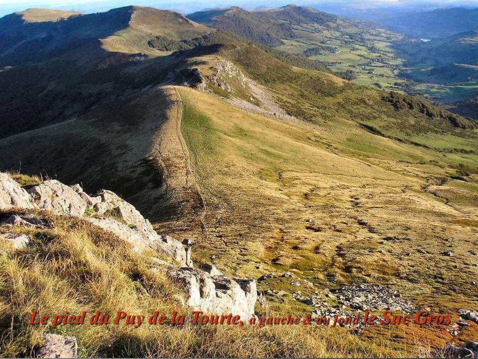 Le pied du Puy de la Tourte, à gauche & au fond le Suc Gros