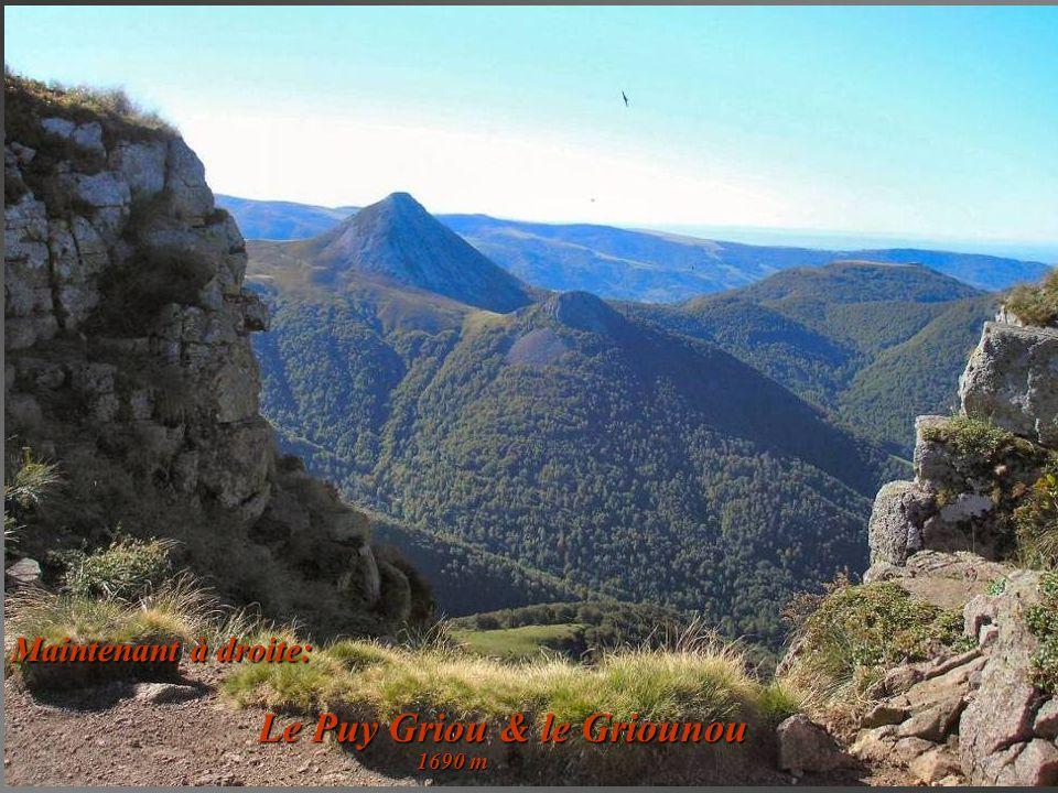 Le Puy Griou & le Griounou
