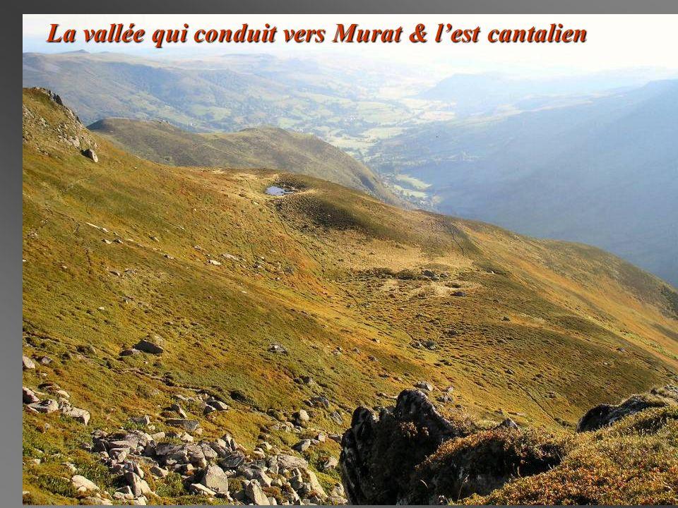 La vallée qui conduit vers Murat & l'est cantalien