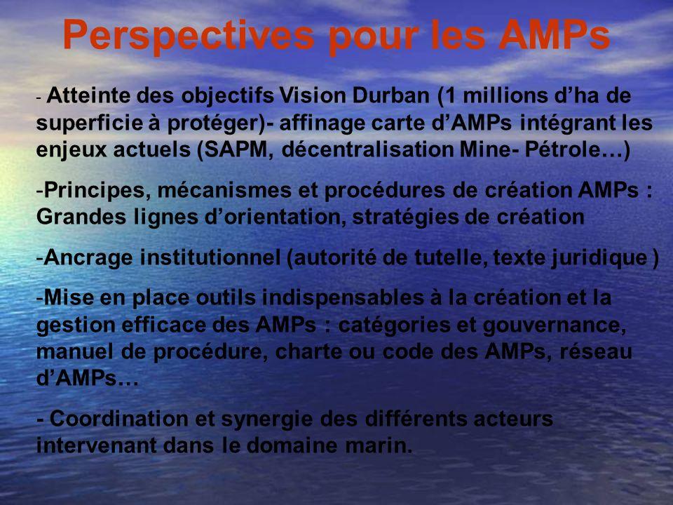 Perspectives pour les AMPs
