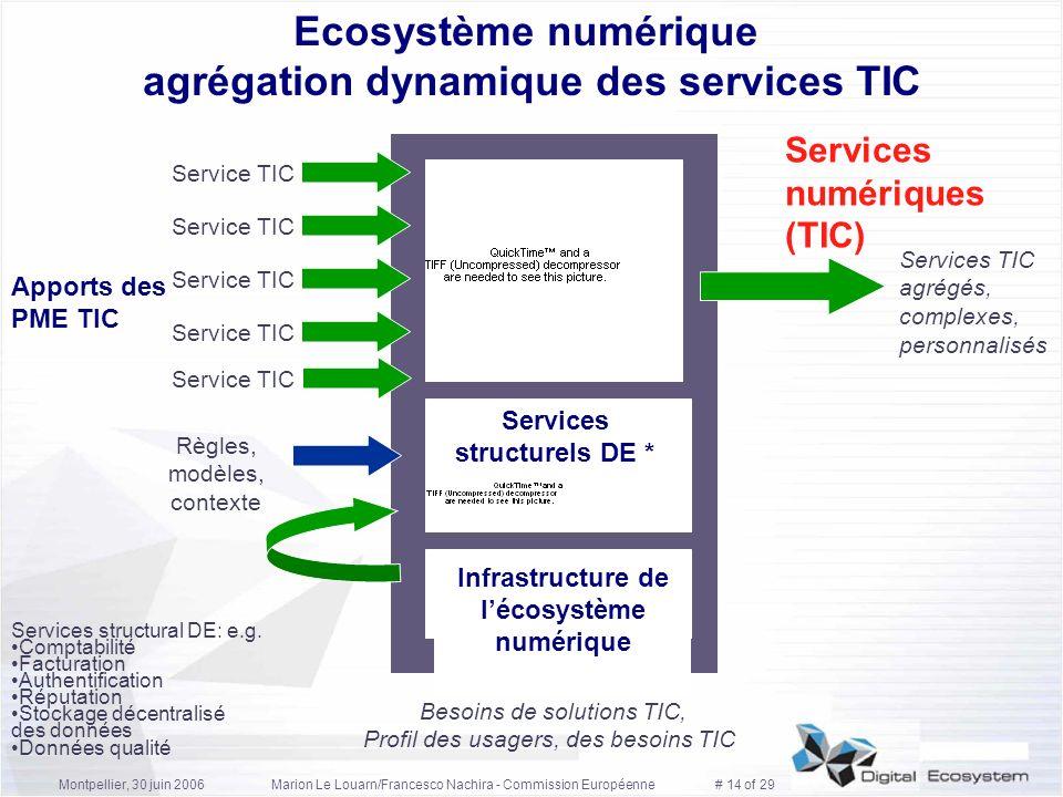 Ecosystème numérique agrégation dynamique des services TIC
