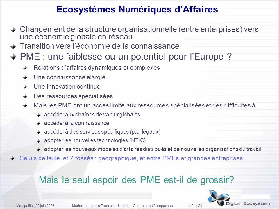 Ecosystèmes Numériques d'Affaires
