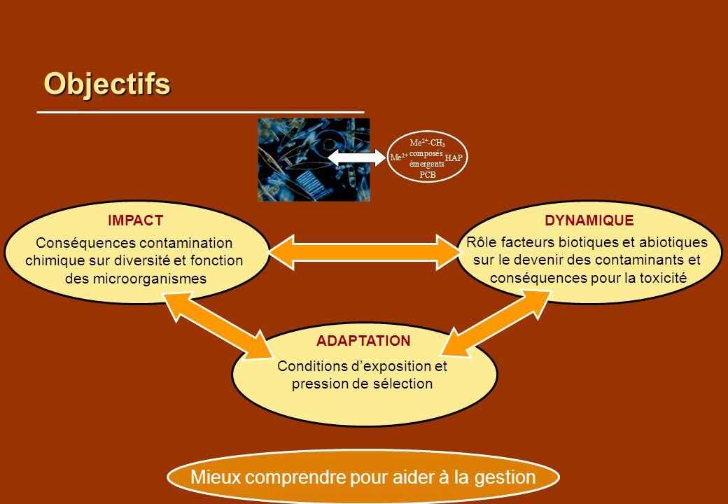 Objectifs Mieux comprendre pour aider à la gestion IMPACT DYNAMIQUE