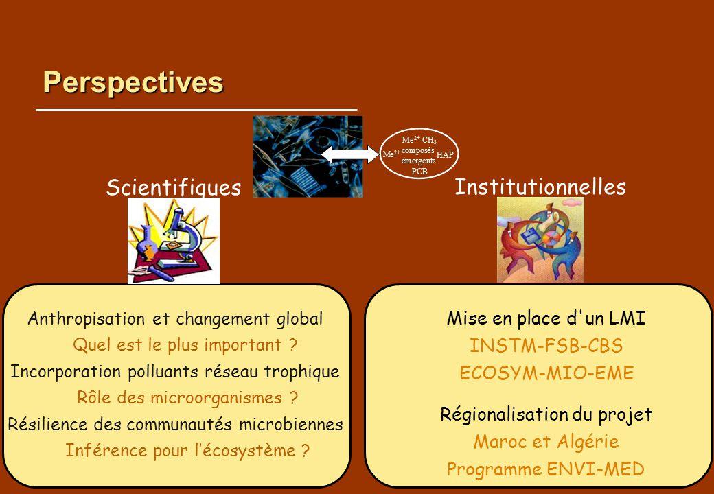 Perspectives Scientifiques Institutionnelles Mise en place d un LMI