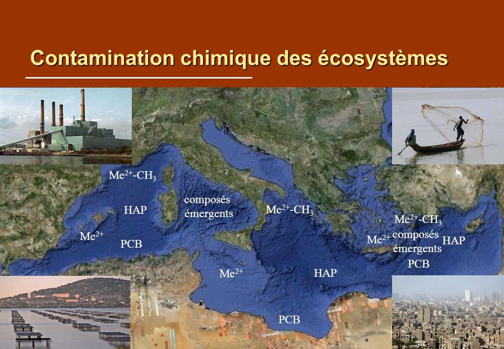 Contamination chimique des écosystèmes