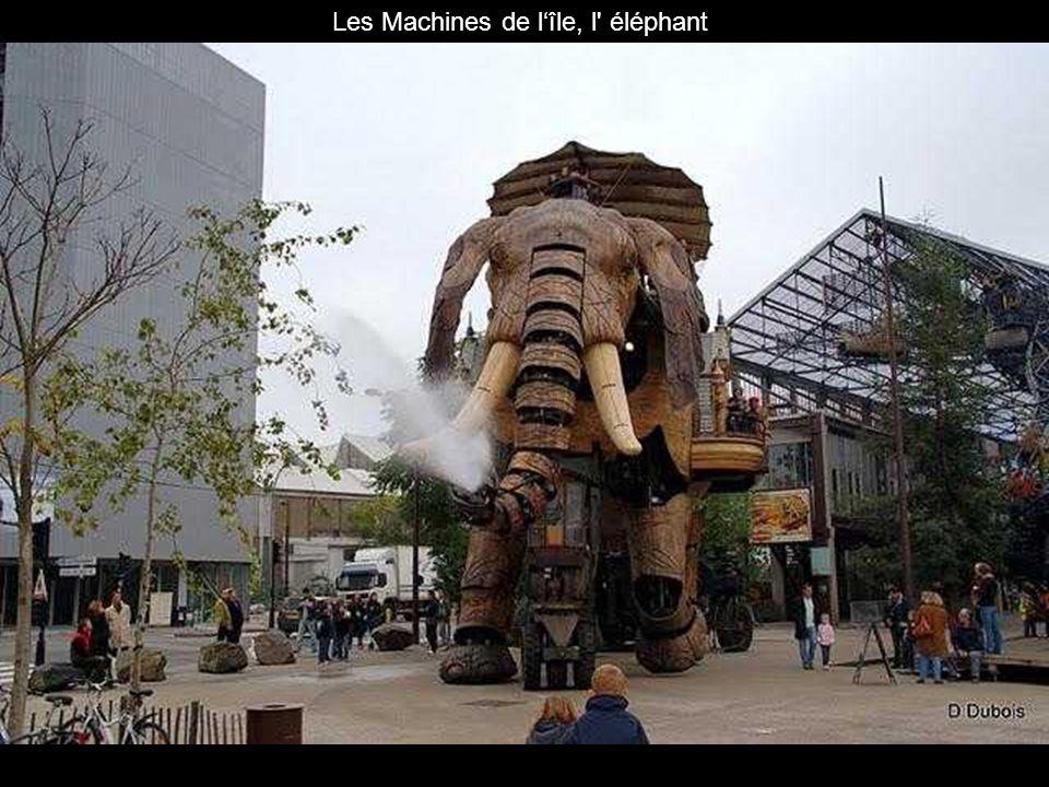 Les Machines de l'île, l éléphant