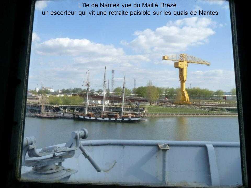 L île de Nantes vue du Maillé Brézé ..