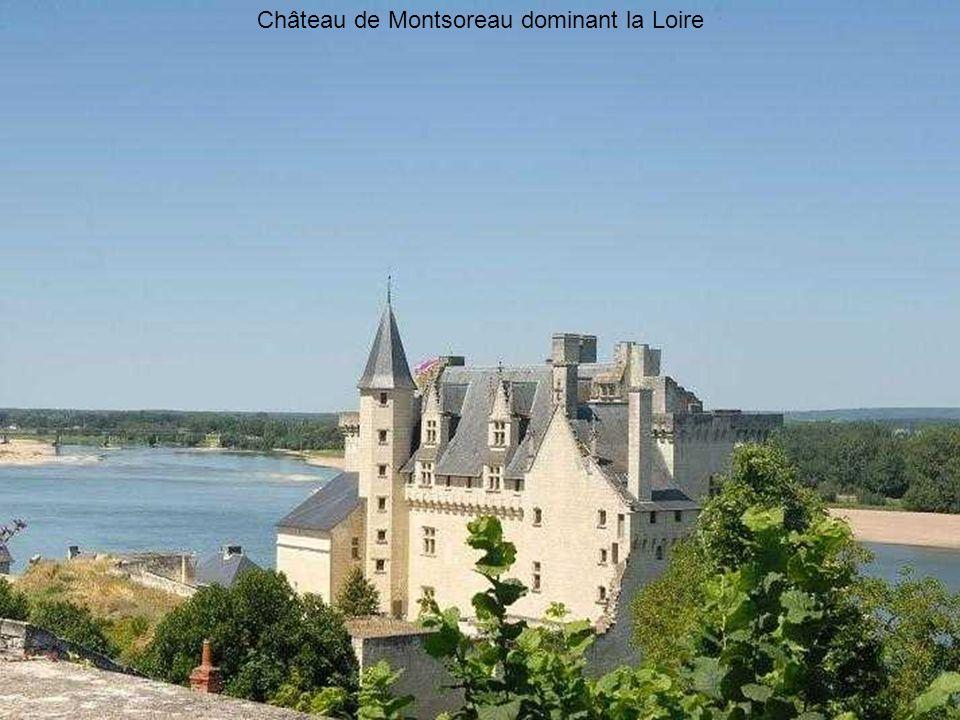 Château de Montsoreau dominant la Loire